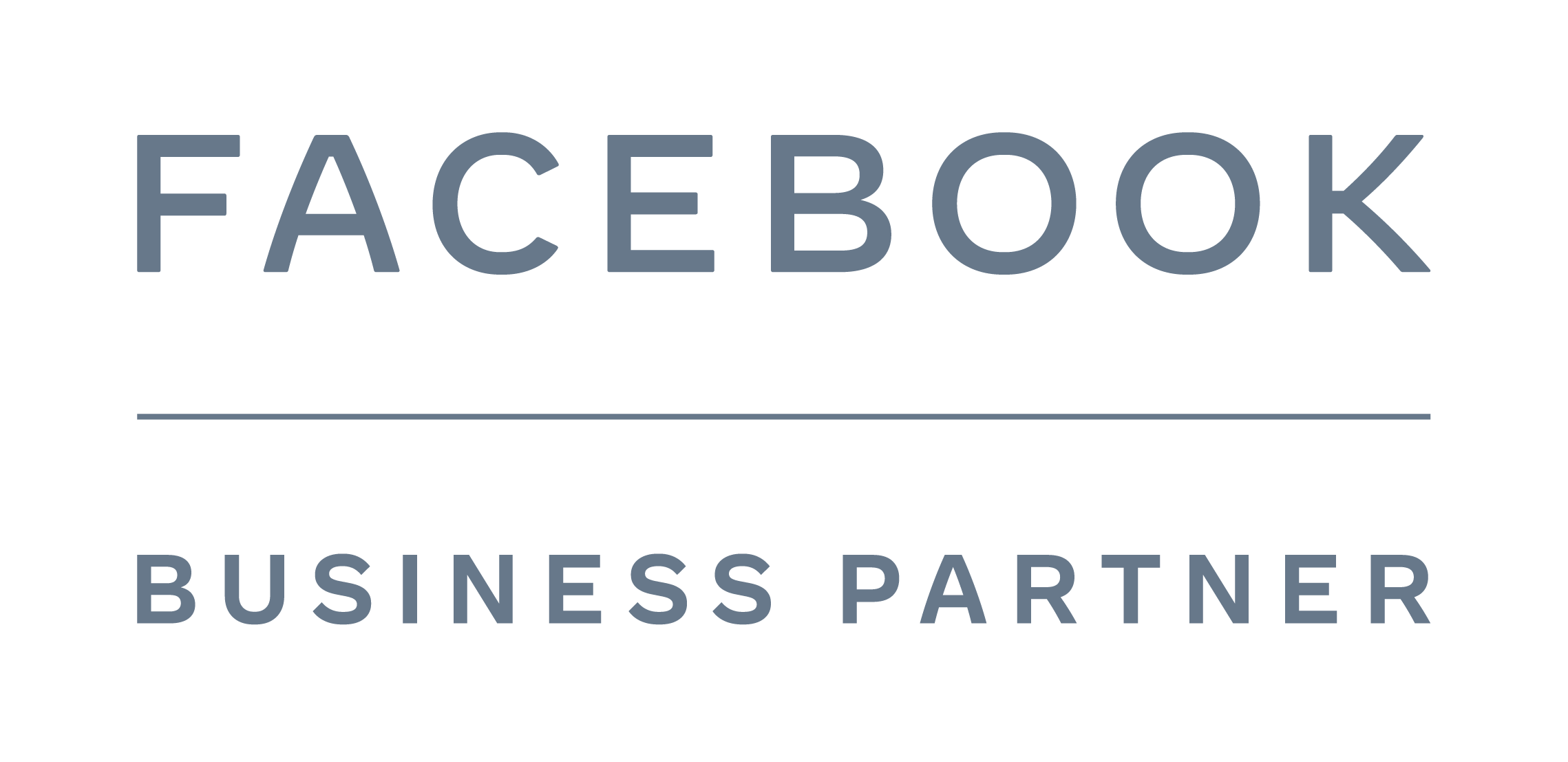 AnyTrack is a badged Facebook Business Partner for the Conversion Data speciality